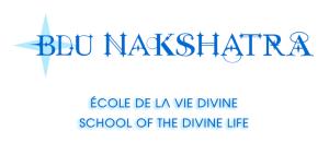 Blu nakshatra Logo